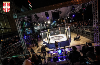 Delta City – BELGRADE MMA OPEN 2019